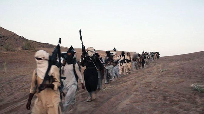 """""""Наркотический рай"""". Названо место, где ИГИЛ хочет оздоравливать боевиков"""