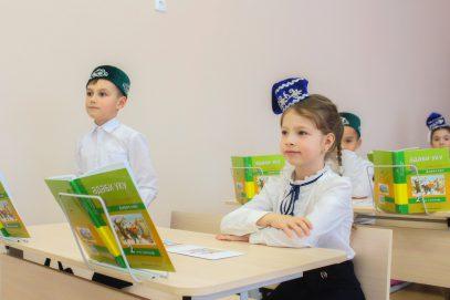 Братские народы поддержали татар в борьбе за родной язык