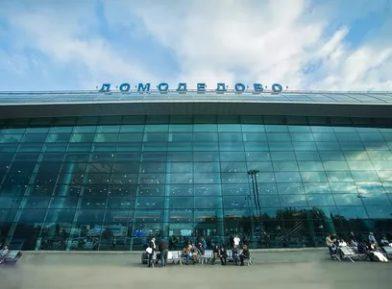 В Домодедово задержали необычных нелегалов из ОАЭ