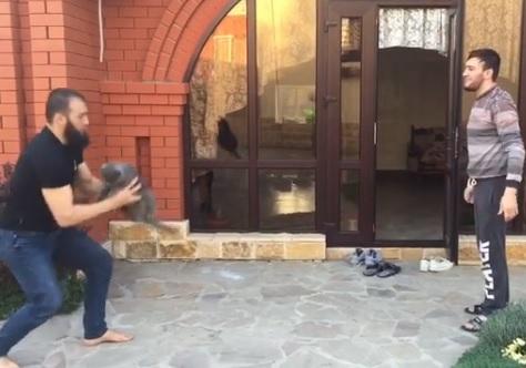 Превратившие кота в мяч чеченские бойцы взбесили в соцсети (ВИДЕО)