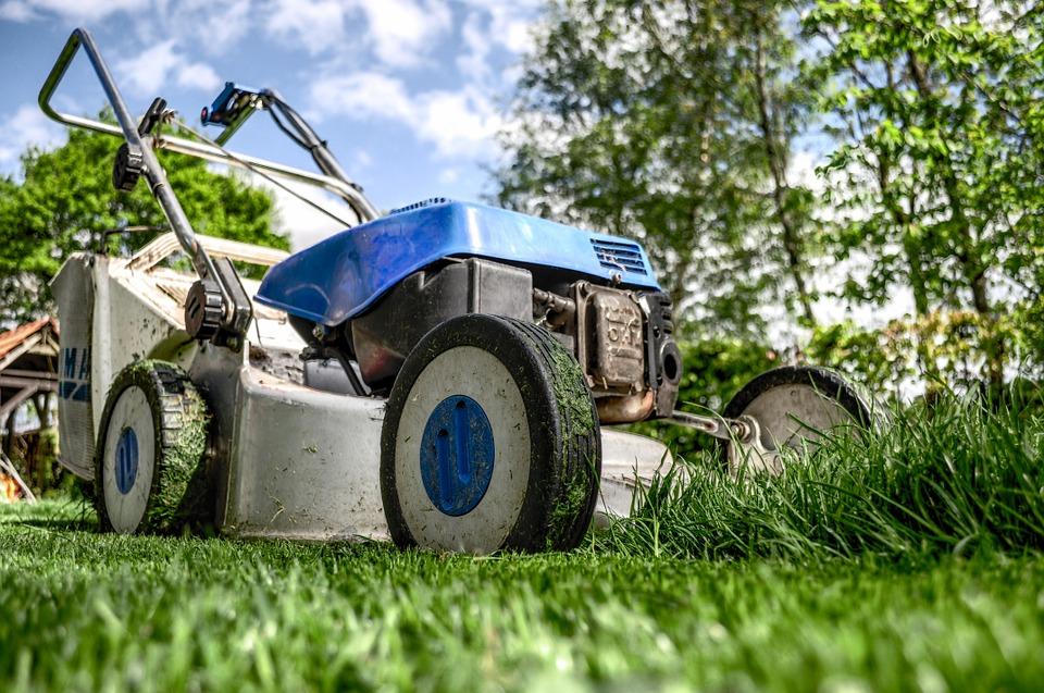 Нюансы подбора хорошей газонокосилки для своего участка