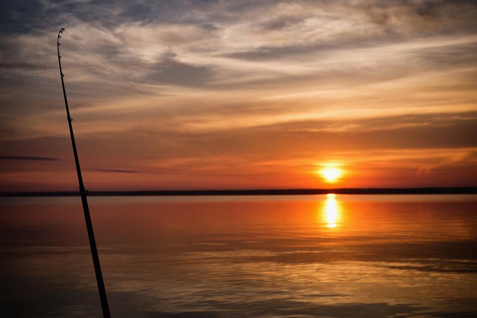 Советы рыболовам: выбираем маховое удилище