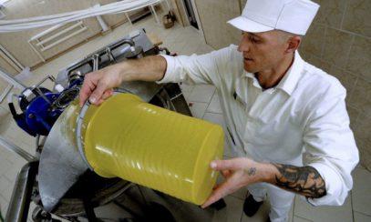 Суррогат шагает по стране. Россия беспрецедентно нарастила импорт пальмового масла (ВИДЕО)