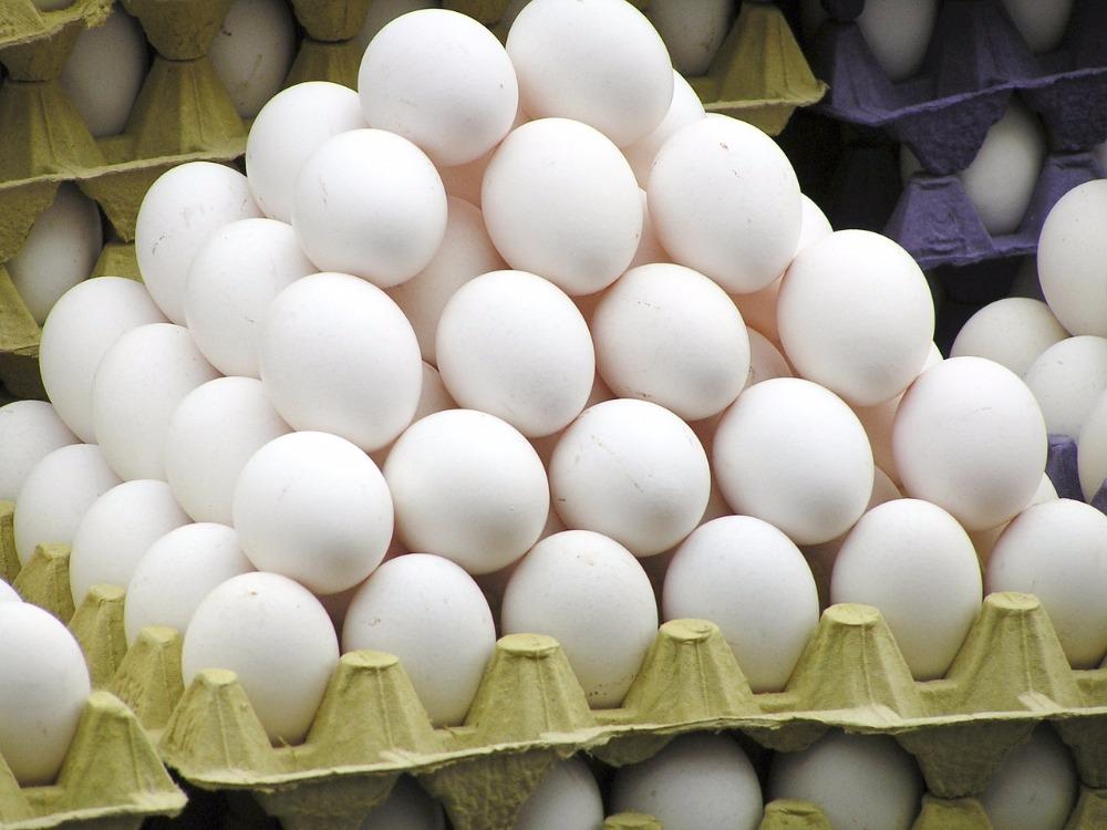 Крупнейшая мусульманская страна переживает кризис с яйцами из-за ЧМ-2018