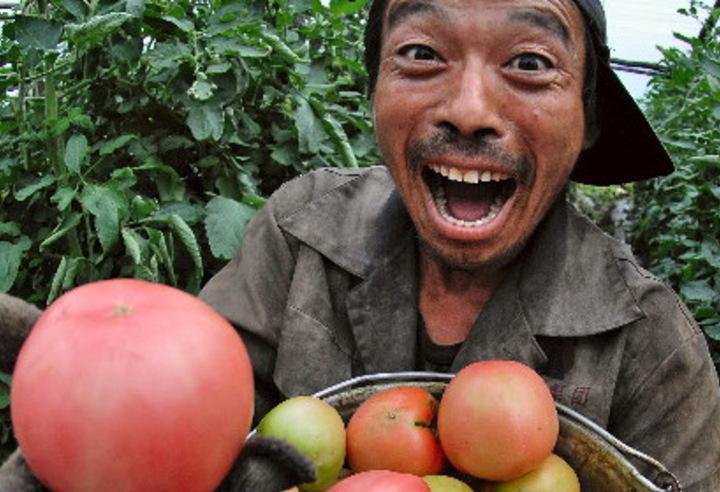 Жителей Чечни пугают отравленными овощами от китайцев