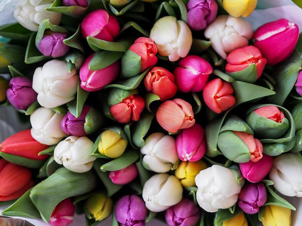 Что является правильной основой для цветочного букета?