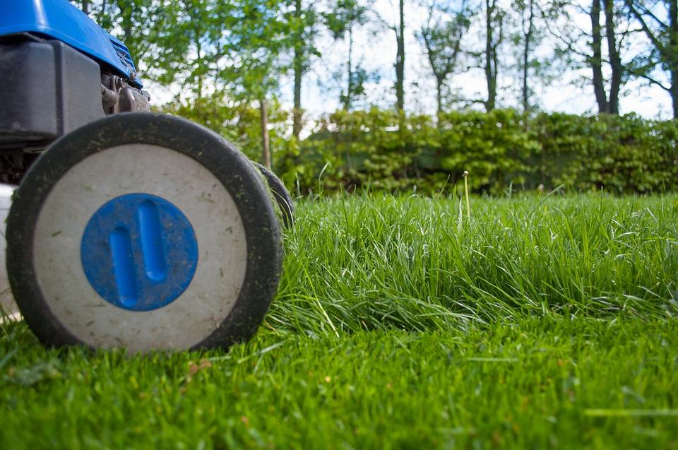 Где в Украине заказать электроинструмент и садовую технику?