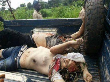 Опубликованы снимки убитых в ЦАР российских журналистов со следами пыток на телах