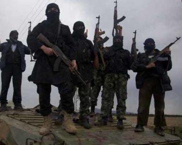 Дагестанский салафит, попав в Сирию, изменил отношение к джихаду и халифату (ВИДЕО)