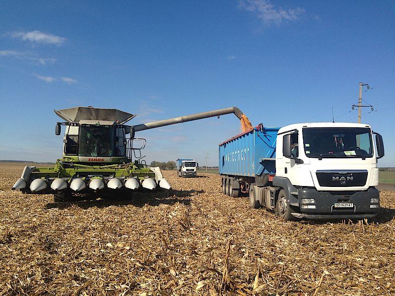 Уборка урожая на полях Украины