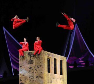 Цирк дю Солей нашел альтернативу полуголым гимнастам для Саудовской Аравии
