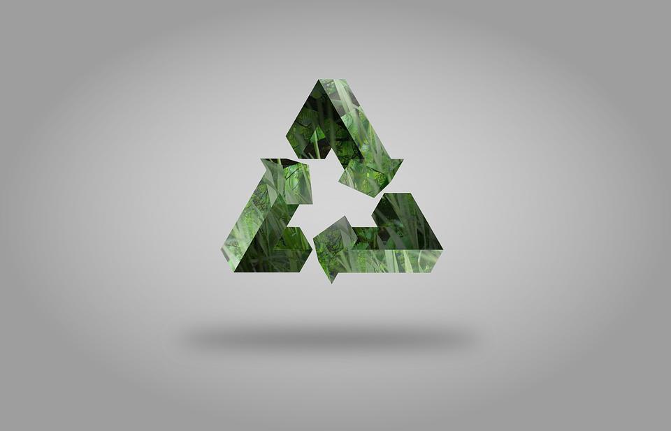 Важность грамотной утилизации биоотходов