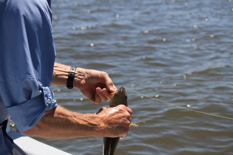 Для хорошей рыбалки потребуются снасти и наживка.