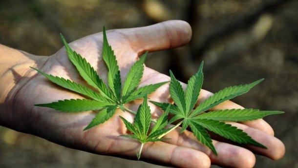 Коран и конопля от к головного мозга от марихуаны