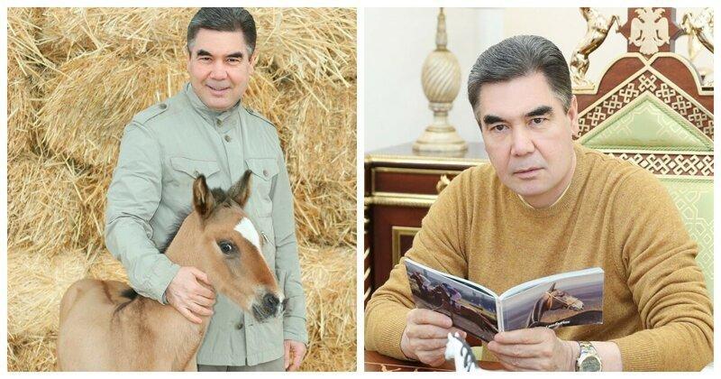Президент Туркменистана Гурбангулы Бердымухамедов и его жеребенок Ровач