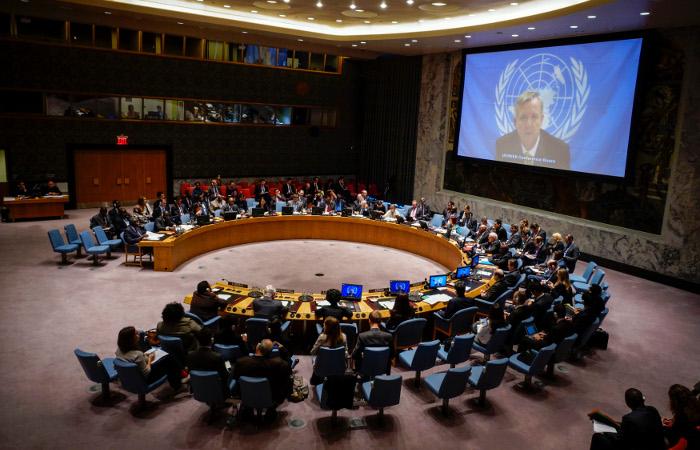 Голосование СБ ООН