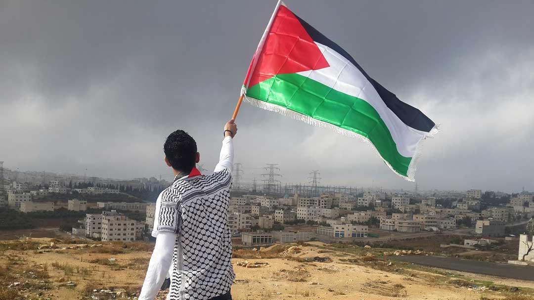 Житель Палестины с национальным флагом на фоне незаконных израильских поселений