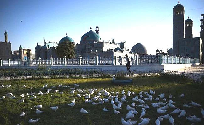 Голуби у мечети в Мазари-Шарифе