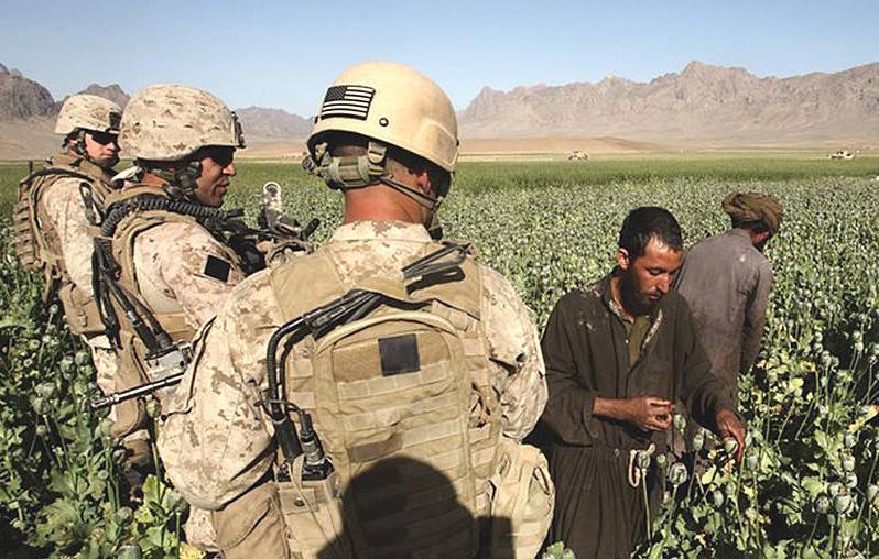 Американские военные посещают плантацию опийного мака
