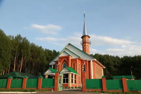 Саранск. Мечеть Ускудар